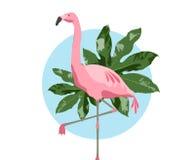Uccello rosa del fenicottero sopra fondo blu Immagini Stock Libere da Diritti