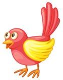 Uccello rosso Fotografia Stock