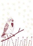 Uccello su un ramo Fotografie Stock