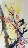 Uccello su un ramo della prugna Immagini Stock Libere da Diritti