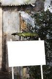 Uccello sul segno in bianco Fotografia Stock Libera da Diritti