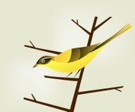 Uccello sulla filiale illustrazione vettoriale