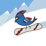 Uccello sullo snowboard Fotografia Stock