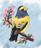 uccello sveglio e stagione primaverile e fiori sull'albero, uccello sveglio, uccelli svegli dell'uccello, molla, animali, natura, illustrazione di stock