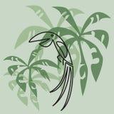 Uccello tropicale con le foglie di palma Fotografia Stock Libera da Diritti