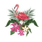 Uccello tropicale esotico dei fiori di fenicottero royalty illustrazione gratis
