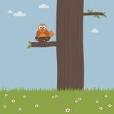 Uccello in un nido Immagini Stock