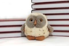 Uccello un simbolo del gufo di aquila di saggezza Fotografie Stock Libere da Diritti