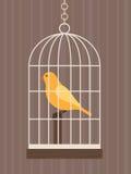 Uccello in una gabbia Immagine Stock