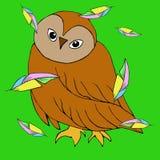 Uccello variopinto con le piume luminose su fondo Immagini Stock Libere da Diritti