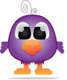 Uccello viola sveglio Fotografia Stock