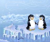 Uces par de pingüinos que se sientan en una masa de hielo flotante de hielo Foto de archivo libre de regalías