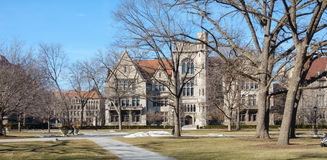 UChicago Campus royalty free stock photography