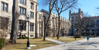 UChicago Campus Royalty Free Stock Images