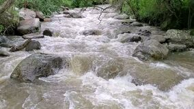 Uchima River, Ecuador