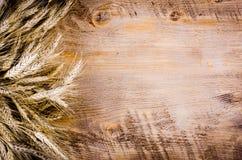 Ucho banatka na drewnianym tle Rama Obraz Stock