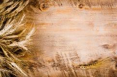 Ucho banatka na drewnianym tle Rama Zdjęcie Stock