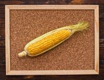 Ucho kukurudza na tablicie informacyjnej Obrazy Royalty Free