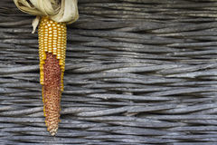 Ucho kukurudza z suchymi liśćmi przeciw drewnianemu tłu Zdjęcia Stock