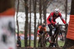 UCI-världscup Cyclocross - Hoogerheide, Nederländerna Arkivbild