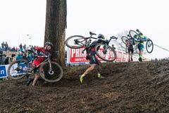 UCI-Weltcup Cyclocross - Hoogerheide, die Niederlande Stockfoto