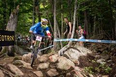 UCI-Wereldbeker bergaf 2013, Mont Ste-Anne, Beaupr Stock Fotografie
