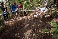 UCI-Wereldbeker Dwarsland 2013, Mont Ste-Anne, B Stock Fotografie