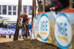 UCI World Championship Cyclocross - Heusden-Zolder, Belgium Royalty Free Stock Images