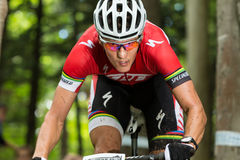 UCI World Cup Cross Country 2013, Mont Ste-Anne, B stock photography