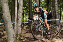 UCI World Cup Cross Country 2013, Mont Ste-Anne, B. MONT STE-ANNE, QUEBEC, CANADA - AUGUST 10: Cross Country Men Elite, 14th place, SUI - GUJAN Martin, UCI World Royalty Free Stock Images
