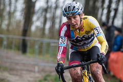 UCI World Cup Cyclocross - Hoogerheide, Netherlands Royalty Free Stock Images