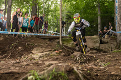 UCI World Cup Downhill 2013, Mont Ste-Anne, Beaupr. MONT STE-ANNE, QUEBEC, CANADA - AUGUST 11: Downhill Men Elite, 69th place, IRL - MCGLINCHEY Christopher, UCI Royalty Free Stock Image