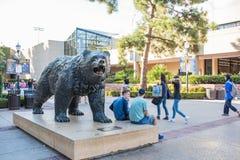 UCLA Bruin Bear. Los Angeles, CA: October 20, 2017: Bruin Bear on the UCLA campus. UCLA is a public university Stock Photos