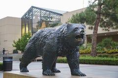 UCLA Bruin Statue Royalty Free Stock Photo