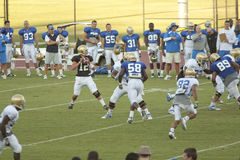 UCLA Bruins Football Scrimmage Stock Images