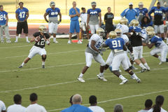 UCLA Football Scrimmage. LOS ANGELES - AUGUST 21: UCLA Bruins scrimmage against each other on August 21, in Los Angeles. Quarterback Richard Brehaut passes the royalty free stock photography