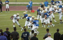 UCLA Football Scrimmage Royalty Free Stock Photo