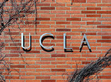 UCLA Royalty Free Stock Image