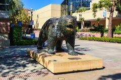 UCLA niedźwiadka niedźwiedzia statua Zdjęcia Royalty Free