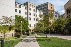 UCLA resident halls. Royalty Free Stock Image