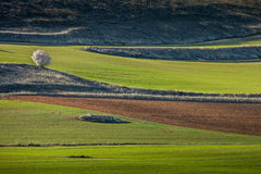 Ucles, Cuenca province, Castilla La Mancha, Spain Stock Photography