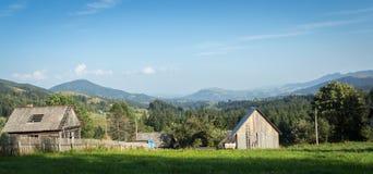 Ucrânia, Carpathians, paisagem Fotos de Stock Royalty Free