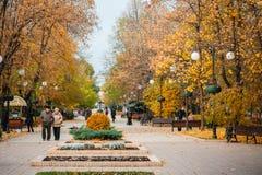 UCRÂNIA, DONETSK, NOVEMBRO, 03, 2015: Avenida bonita do outono e povos de passeio Imagem de Stock Royalty Free