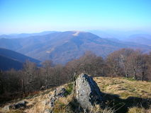 ucrânia Montanhas Carpathian Imagens de Stock