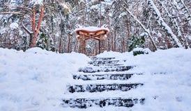 UCRÂNIA - CHERKASY colunas antigas e escadas do 20 de janeiro de 2018 cobertas com a neve imagem de stock