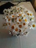 Ucrania el ramo blanco más hermoso de wildflowers foto de archivo libre de regalías