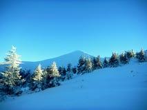 Ucraniano Carpathians do inverno Imagens de Stock