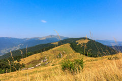 Ucranino Carpathians Fotografia Stock Libera da Diritti