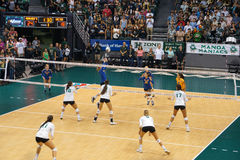 UCSB player volleys volleyball to teammate as UH Women's players Stock Images