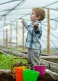 Uczenie ekologia mała chłopiec uczenie ekologia w szklarni uczenie ekologia podczas gdy pracujący z roślinami uczenie ekologia zdjęcie stock